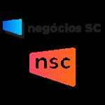 NSC-2